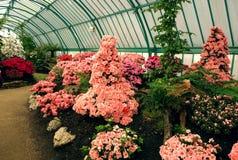 Royal Greenhouses of Laeken Royalty Free Stock Images