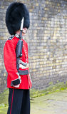 Royal guard Stock Photos