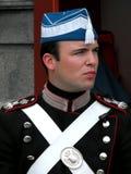 Royal Guard at Amalienborg Castle, Copenhagen Stock Photos
