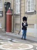 Royal guard at Amalienborg Palace, Copenhagen Denmark Royalty Free Stock Images