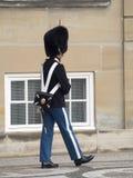 Royal guard at Amalienborg Palace, Copenhagen Denmark Stock Images