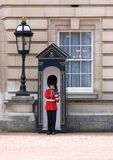 Royal Guard Buckingham Palace Royalty Free Stock Images