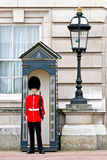 Royal guard at Buckingham Palace. Royal guard in red uniform on duty at Buckingham Palace London England UK royalty free stock photography
