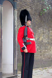 Royal guard at Buckingham Palace Royalty Free Stock Images