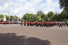 The Royal Guard Royalty Free Stock Photos