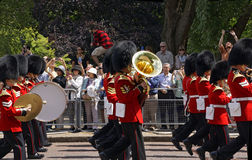 The Royal Guard Royalty Free Stock Photo