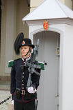 Royal Guard Stock Images