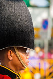 Royal Guard Fuzzy Hat Profile Stock Images