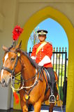 Royal guard on horse guarding the palace Royalty Free Stock Image