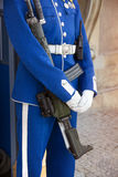 Royal Guard at the Royal Palace in Stockholm Stock Images