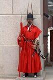 Royal guard, Seoul, Korean Republic Royalty Free Stock Images