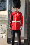 Royal Guard Royalty Free Stock Photo