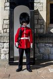Royal Guard standing near a booth royalty free stock image