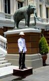 The royal guard Royalty Free Stock Image