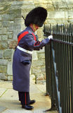 Royal guard, Windsor, England Royalty Free Stock Photography