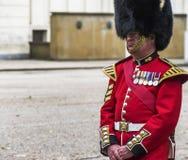Royal Guard Stock Photo