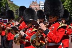 Royal Guards Band Irish Guards Royalty Free Stock Image