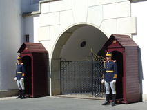 Royal guards Stock Photos