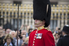 Royal Guardsman, London Stock Images