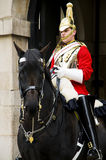 Royal horse guard. Waiting for the changing of the guard in Buckingham, London Royalty Free Stock Images