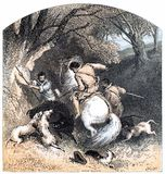 Royal Hunting in France Stock Images
