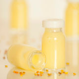 Royal jelly Stock Images
