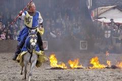 Royal knights Stock Photography