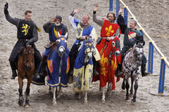 Royal knights Stock Images