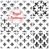 Royal lily flower fleur-de-lis floral patterns set Royalty Free Stock Photo