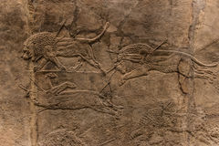 The royal Lion Hunt, Assyrian art form 645 - 635 BC Royalty Free Stock Image