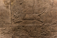 The royal Lion Hunt, Assyrian art form 645 - 635 BC Stock Image
