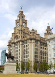 The Royal Liver Building, Liverpool. The Royal Liver Building on the Pierhead at Liverpool, statue of Edward Vii in foreground stock photography