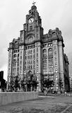 The Royal Liver building in Liverpool Stock Images