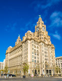 The Royal Liver Building in Liverpool Royalty Free Stock Photography
