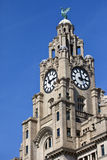 Royal Liver Building in Liverpool Stock Photography