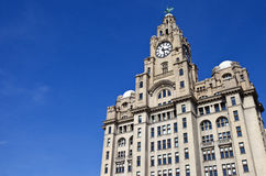 Royal Liver Building in Liverpool Royalty Free Stock Photography