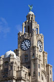 Royal Liver Building in Liverpool Royalty Free Stock Photos