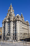 The Royal Liver Building in Liverpool Stock Photo