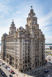 Royal Liver Building at Liverpool Stock Image