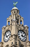 Royal Liver Building in Liverpool Royalty Free Stock Images