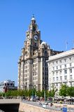 The Royal Liver Building, Liverpool. Royalty Free Stock Image