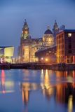 Royal Liver Building Stock Image