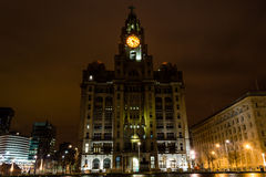 Royal Liver Building by night. ENGLAND, LIVERPOOL - 15 NOV 2015: Royal Liver Building by night Royalty Free Stock Images