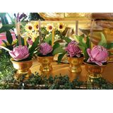 Royal lotuses Royalty Free Stock Photo