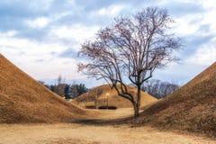 Royal mounds with autumn foliage. Royal mounds of daereungwon under the autumn foliage. Gyeongju, South Korea Stock Photography