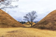 Royal mounds with autumn foliage. Royal mounds of daereungwon under the autumn foliage. Gyeongju, South Korea Stock Photos