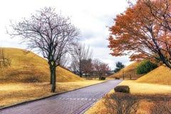 Royal mounds in daereungwon. A small pathway among the royal mounds in daereungwon, gyeongju, south korea Stock Photo