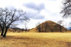 Royal mounds with autumn foliage. Royal mounds of daereungwon under the autumn foliage. Gyeongju, South Korea Royalty Free Stock Photos