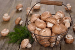 Royal mushrooms in a basket Royalty Free Stock Images