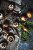 Royal mushrooms on a kitchen towel. Cooking of dishes Royalty Free Stock Photos